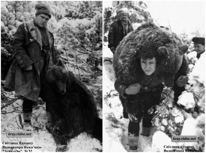 Зворушлива історія про дружбу ведмедя та повстанця УПА