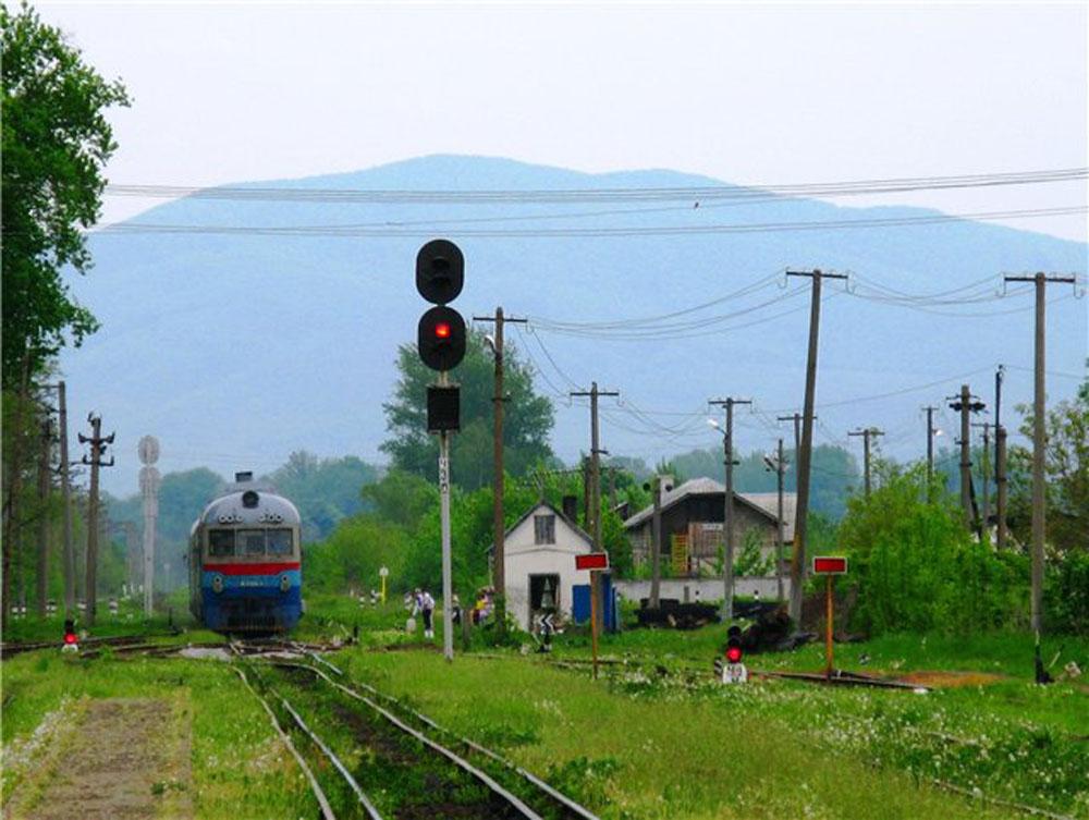 Дизель-поїзд Д1 прибуває до станції Виноградів-Закарпатський. Фото 2011 р.