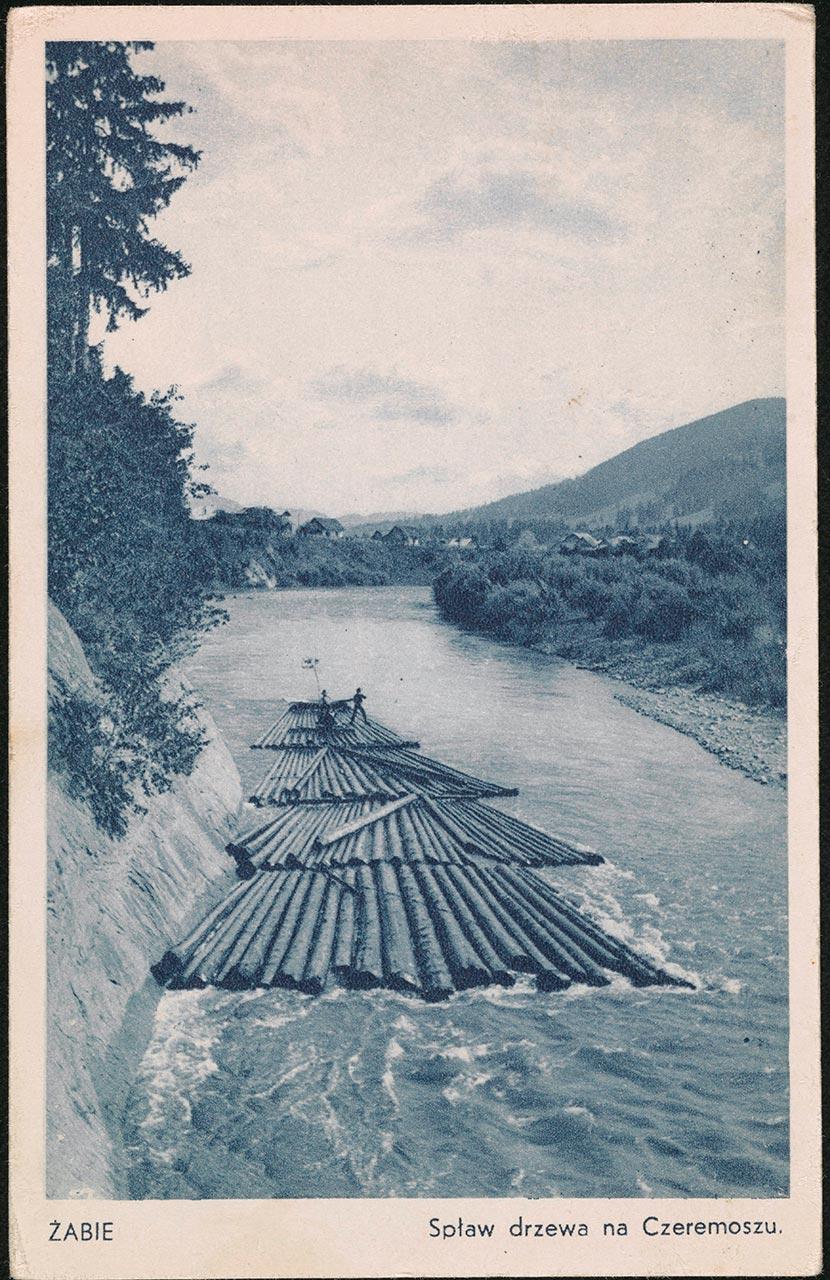 Сплав дарабами в околицях Жаб'є. Листівка, після 1906р. Джерело: https://polona.pl/item/zabie-splaw-drzewa-na-czeremoszu